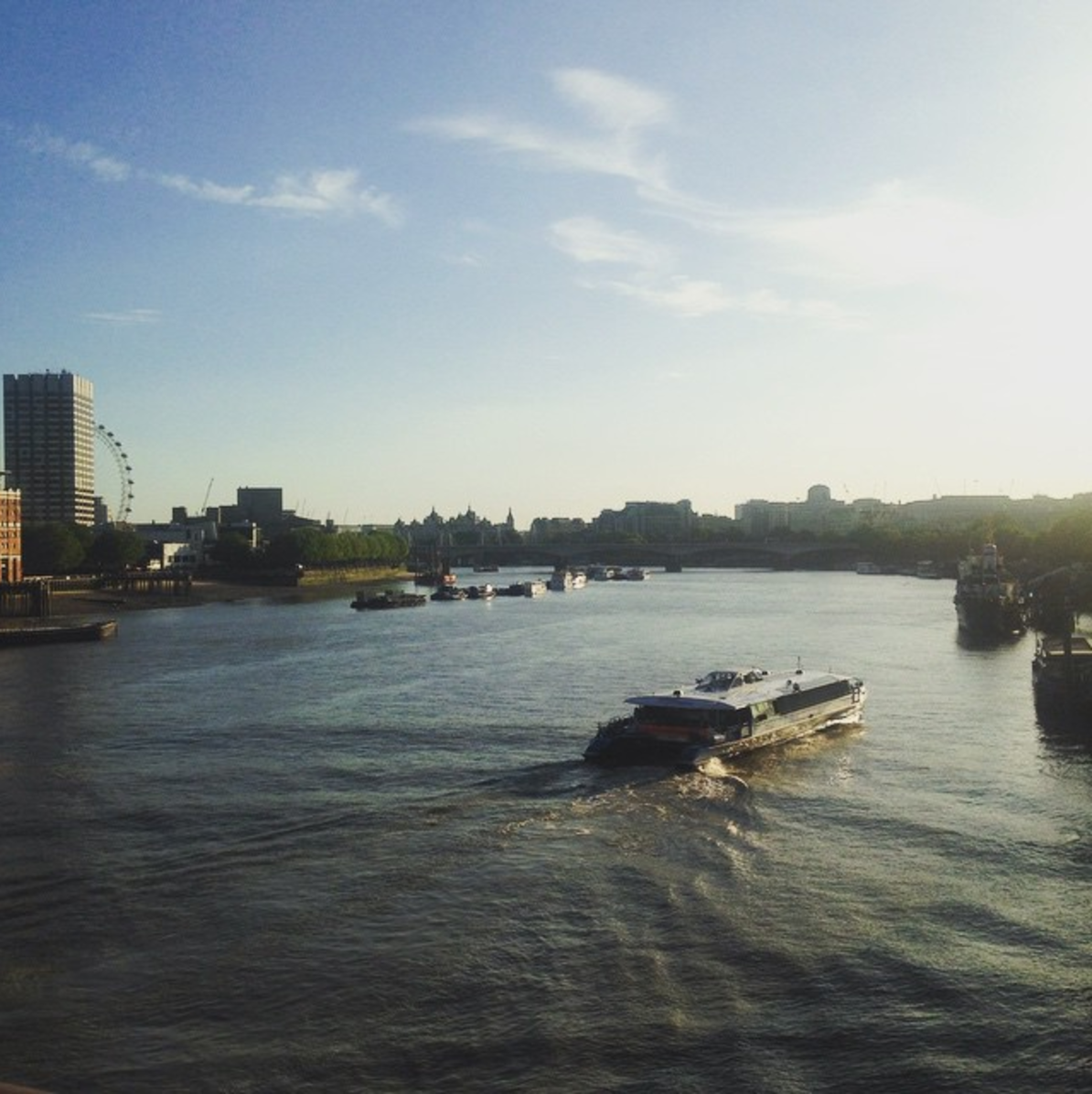 My First Year In London
