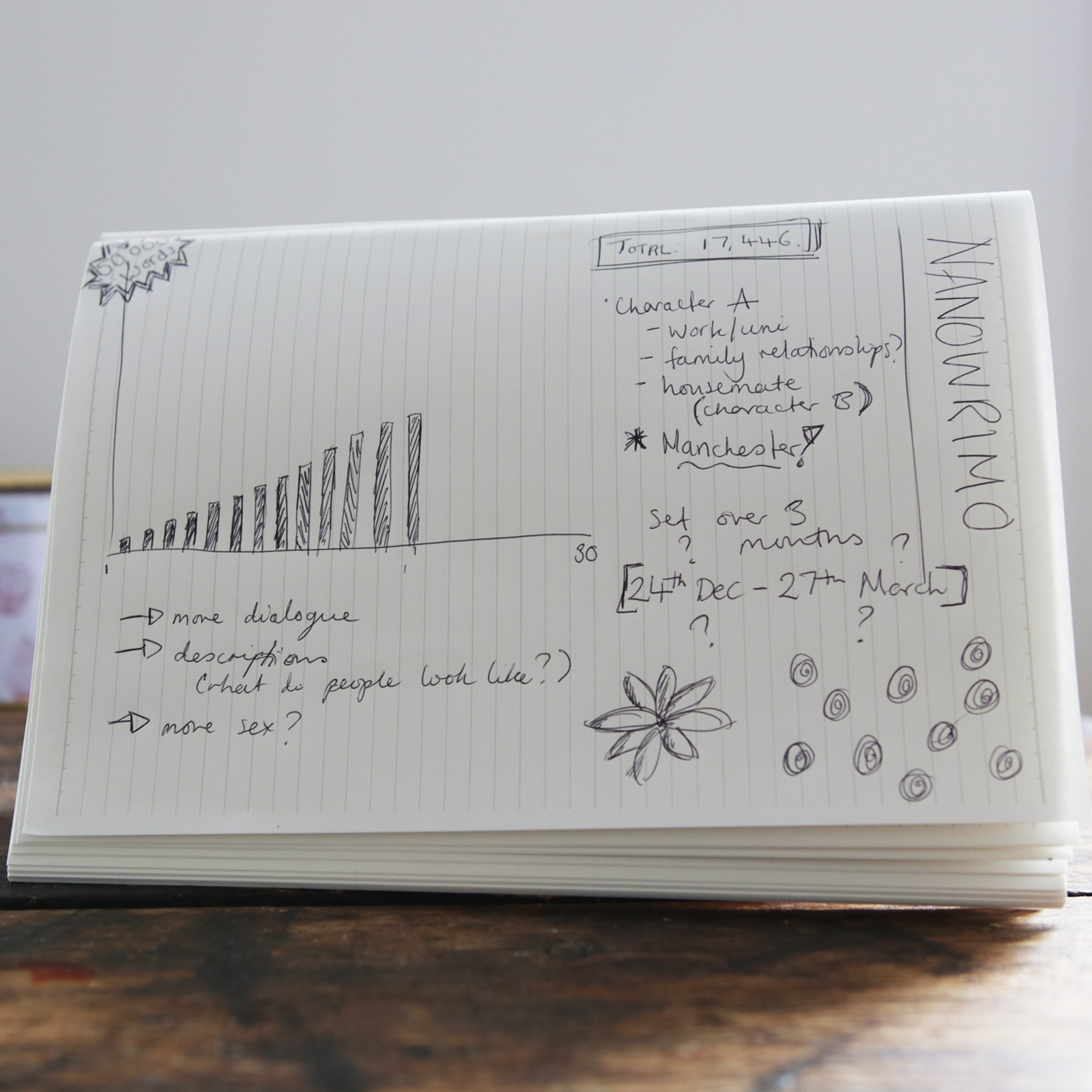 Measuring Your Own Success – How NaNoWriMo Went